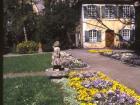 Zollergarten